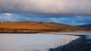 Landscape Islands