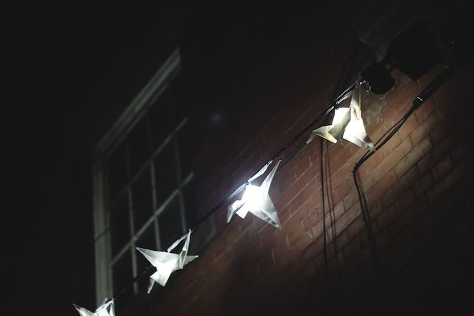 Luminous Birds