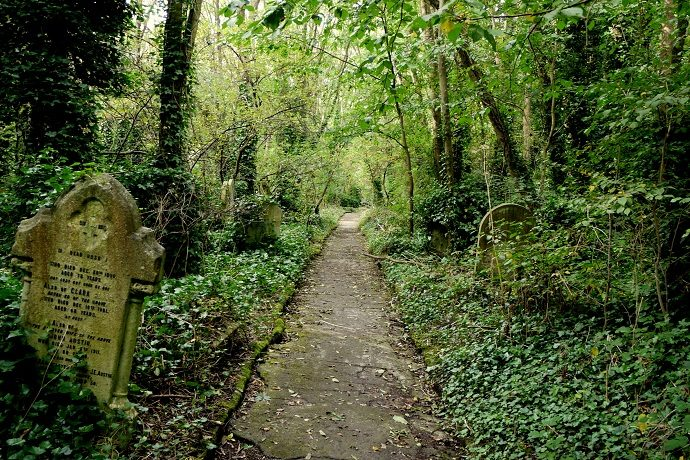 Abney Park cemetery and nature reserve